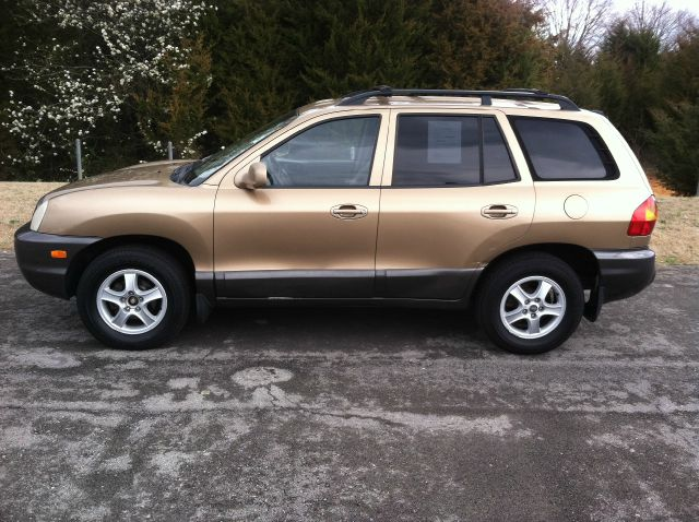 2002 Hyundai Santa Fe